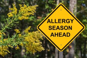 """a road sign with plants surrounding it that says, """"allergy season ahead"""""""